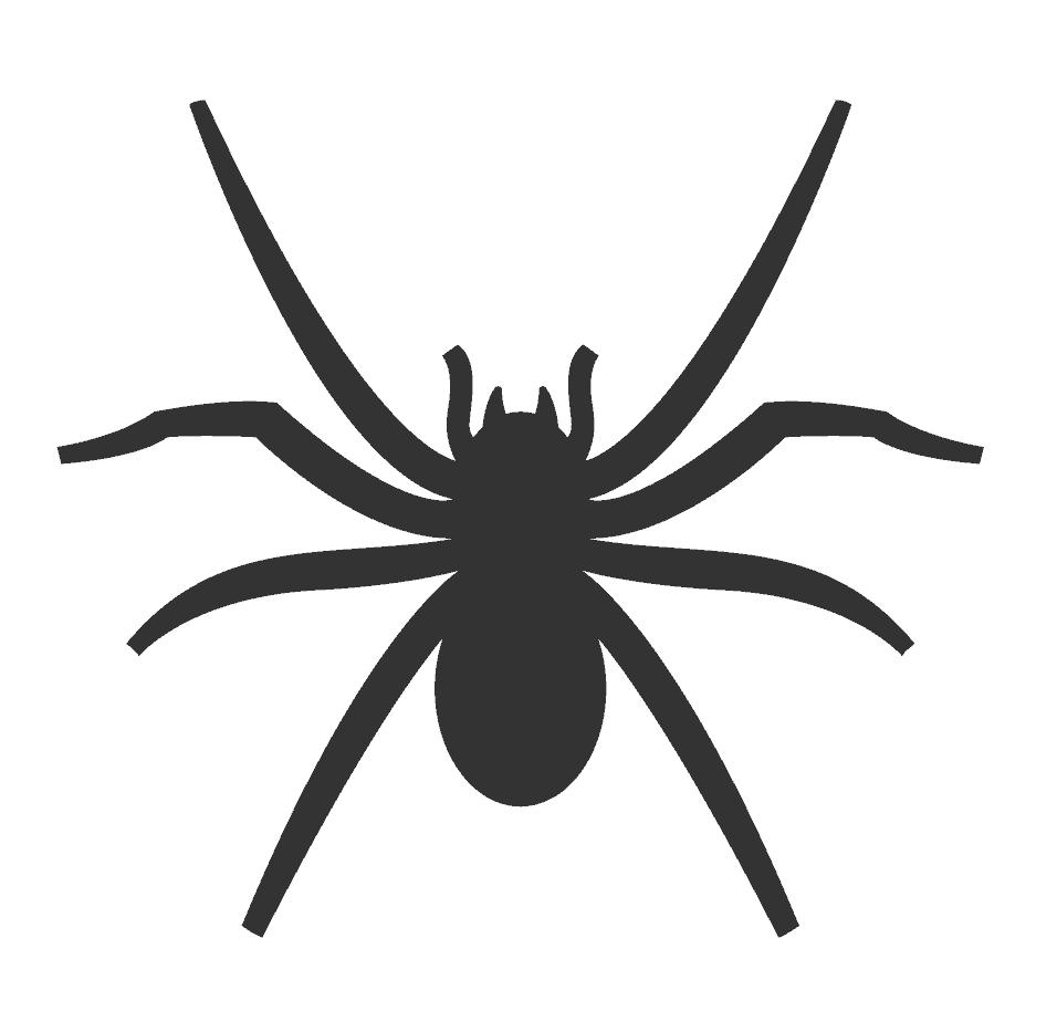 Angst voor spinnen, evolutionair gezien een hele logische angst.